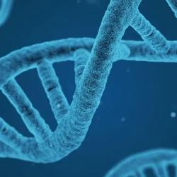 Biologie  logo
