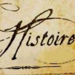 L1 Histoire SU-logo